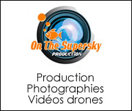 On The Supersky Production
