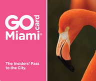 Go Miami Card de Smart Destinations