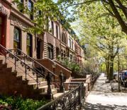 New York Habitat