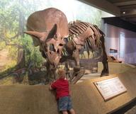 Le Museum of Science de Boston