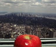 Les spécialités culinaires nées à New York