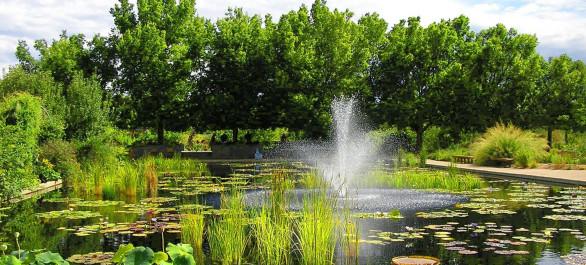 Le Chicago Botanic Garden, un cœur vert dans la ville