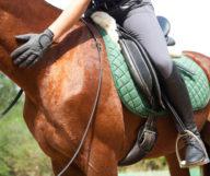Faire du cheval autour d'Atlanta