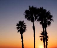 Les plus beaux endroits où admirer un coucher de soleil à Los Angeles