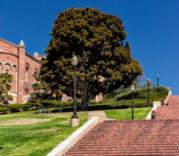 universites-californie-berkeley-ucla-2