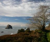 Redwood Coast, entre rivages, villages et sequoias